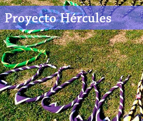 logoproyecto hercules